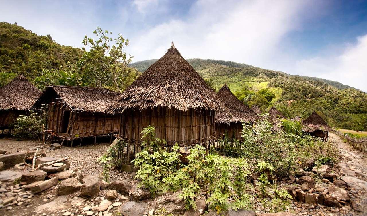 Tradycyjna wioska w Papui (Indonezja) - Tradycyjna wieś indonezyjska mieści się pośród lasu równikowego, a budowane w niej domostwa są proste w konstrukcji i wykonane z materiałów, jakich dostarcza natura. Mieszkańcy wsi głównie (12×7)