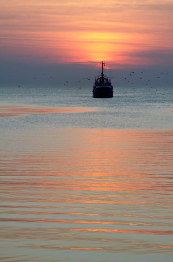 Rybacy powracający do portu - Kuter rybacki jest najmniejszą jednostką służącą rybakom do połowu ryb. Rybacy to osoby trudniące się rybołówstwem i utrzymujące się z połowu ryb i owoców morza takich jak małże czy k (5×7)