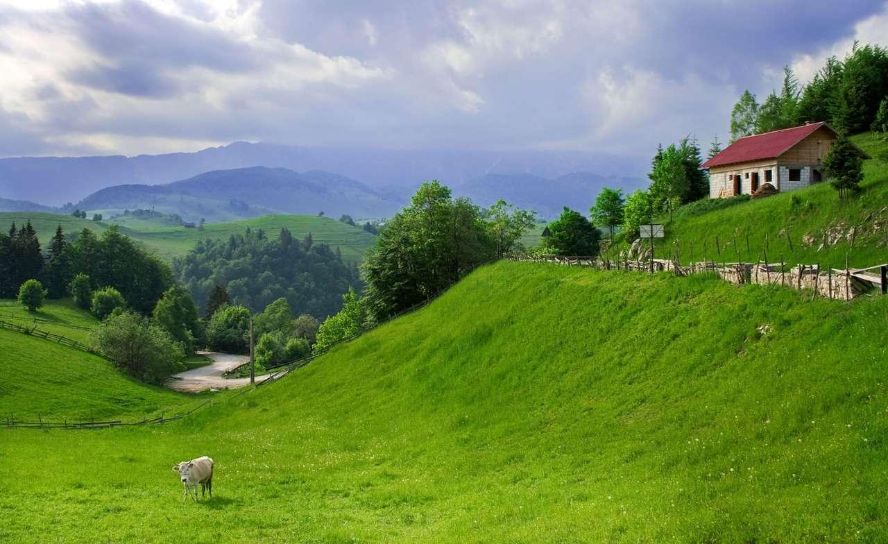 Panorama rumuńskiej wsi - Rumunia jest państwem w południowo-wschodniej części Europy graniczącym z Serbią i Węgrami na zachodzie, Bułgarią na południu oraz Ukrainą i Mołdawią na północy. Niemal połowa kraju za (8×5)