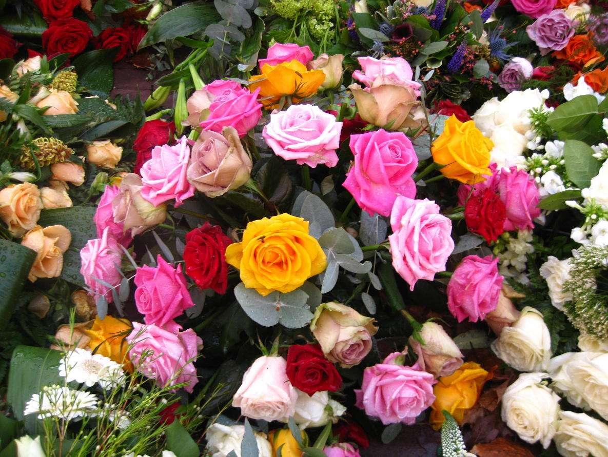 Bukiet kwiatów - Florystyka to sztuka pięknego układania kwiatów, znana od starożytności. Kompozycje z roślin są wykorzystywane najczęściej jako podarunki oraz ozdoby domów. Towarzyszą ludziom w najważniej (15×11)