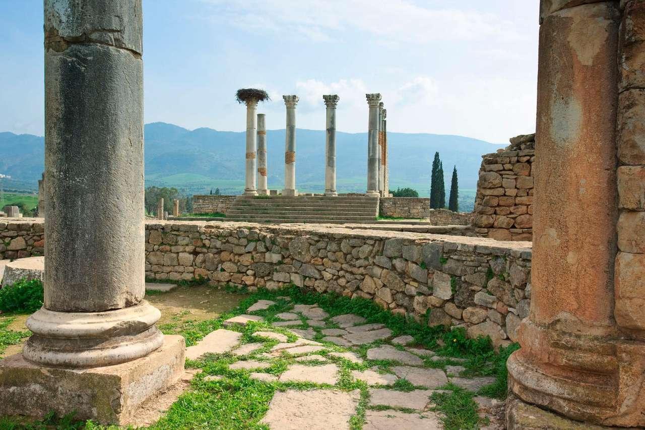 Ruiny Volubilis (Maroko) -  (12×8)