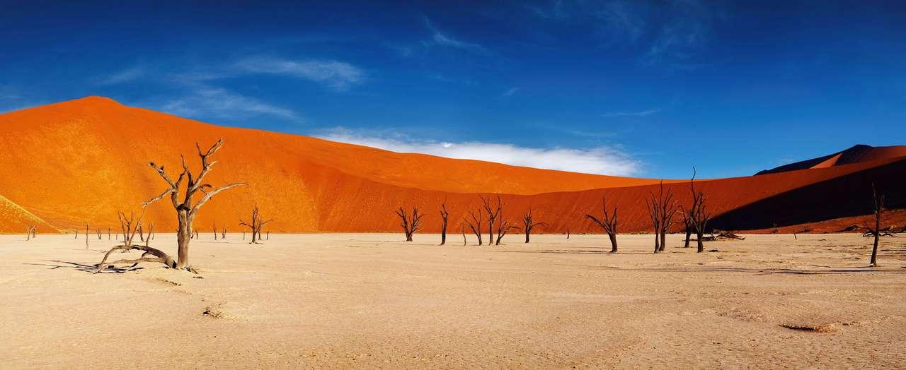Martwe drzewa w Dolinie Śmierci (Namibia)