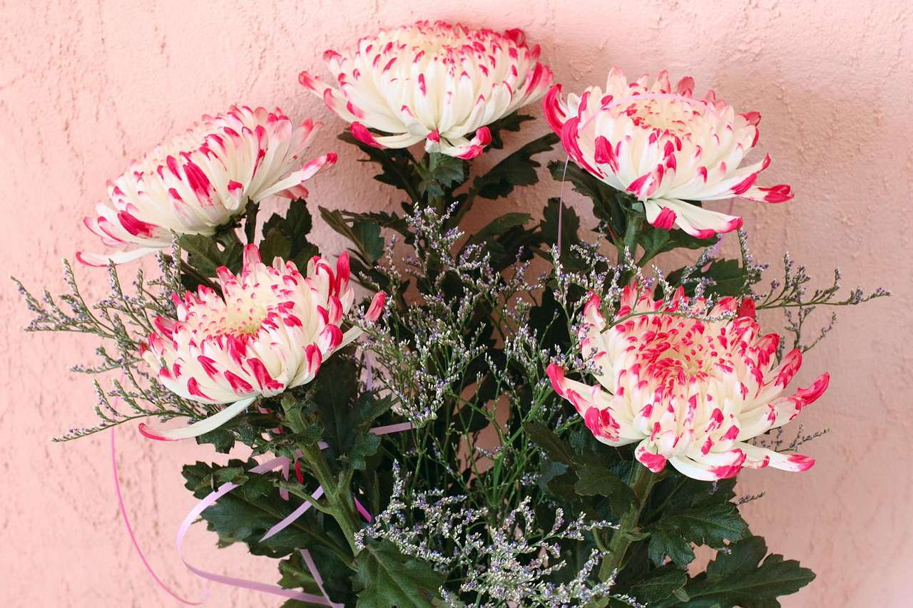 Bukiet chryzantem - Kwiatowe bukiety są powszechną formą podarunku, upominku, sposobu podziękowania lub przeprosin. Dawniej kwiaty – ze względu na ich wyjątkowy, piękny wygląd i szczególne właściwości – f (9×6)