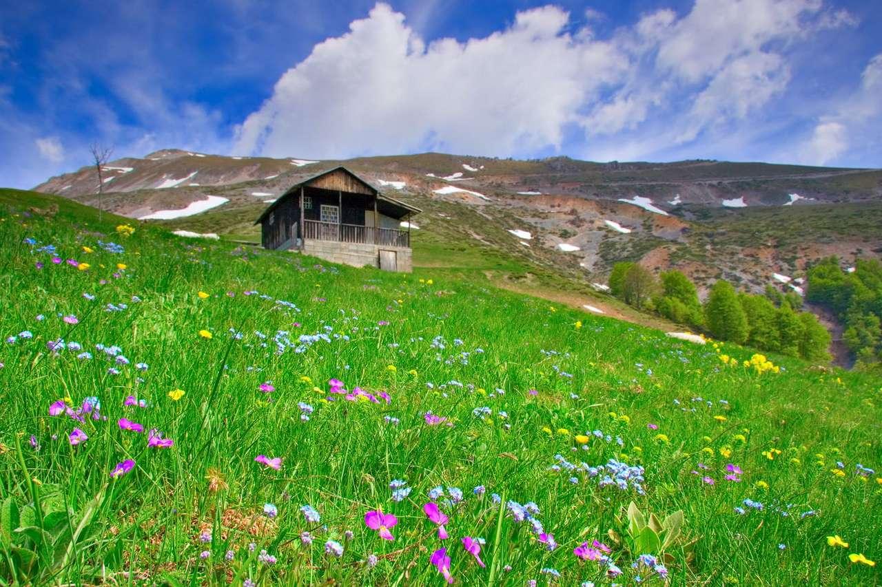 Chatka w górach (Macedonia) - Macedonia jest krajem, w którego krajobrazie dominują wyżyny i góry. W większości są to młode pasma fałdowe, co wiąże się z faktem, iż tereny te są aktywne sejsmiczne. Trzęsienia ziemi (9×6)