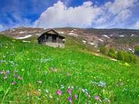 Chatka w górach (Macedonia)