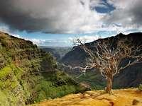 Kanion Waimea na Hawajach (USA)