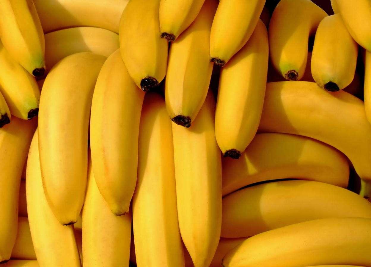 Kiście bananów