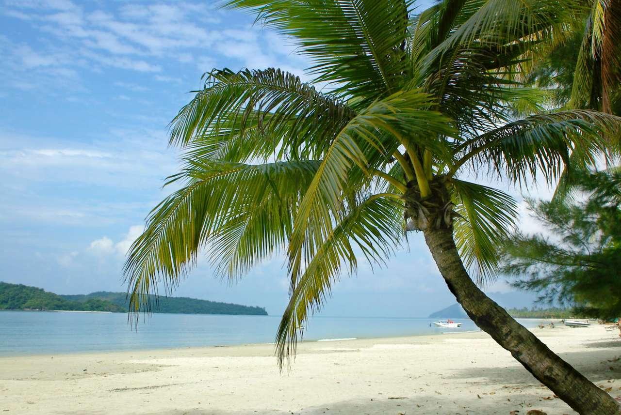 Tropikalna wyspa - Samotna wyspa gdzieś na środku Pacyfiku to z pewnością świetne miejsce, by  uciec od codziennych zmartwień i zakosztować prawdziwego spokoju w cieniu palm. Jeżeli jednak nie jesteśmy mistrzam (7×5)