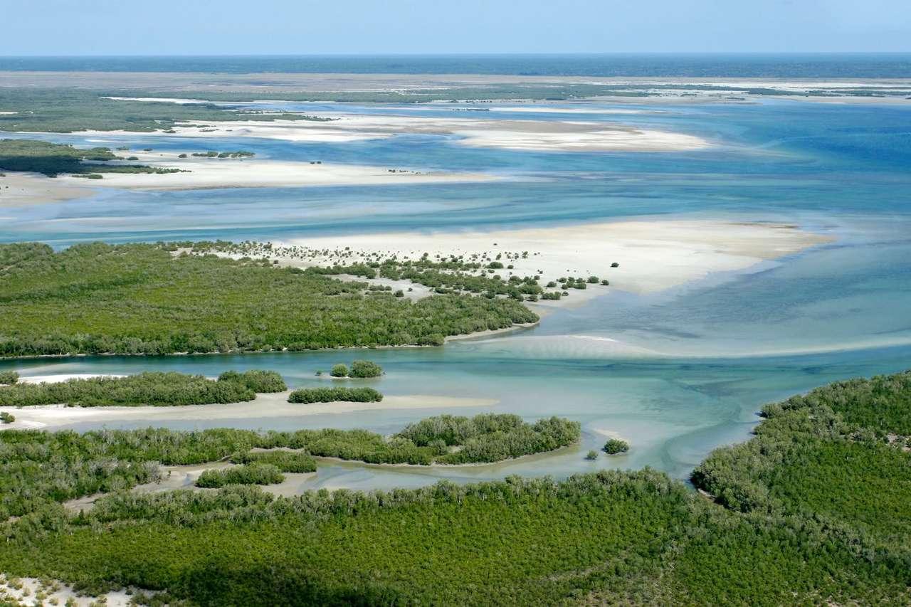 Lesiste wybrzeże (Mozambik) - Mozambik leży nad Oceanem Indyjskim. Na klimat tego obszaru wpływa przede wszystkim ciepły Prąd Mozambicki. Rok dzieli się w Mozambiku w zasadzie na dwie pory: suchą i deszczową. Lasy tropikaln (9×6)