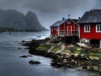 Reine (Norwegia)
