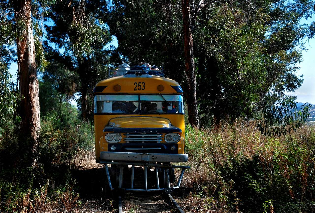 Szynobus (Boliwia) - Boliwijski szynobus z Cochabamby do Aiquile stoi w lesie z winy maszynisty, który poczuł potrzebę na tyle naglącą, że zatrzymał swój pojazd pośrodku niczego. Ciężko dosłowniej przedstawić (10×7)