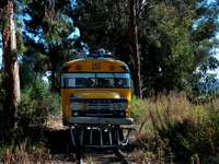 Szynobus (Boliwia)
