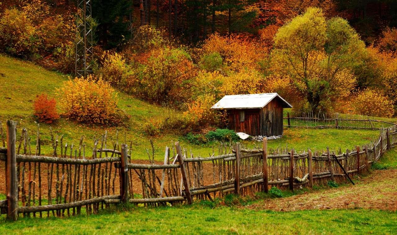Górska chatka pod lasem - Wiele osób uważa, że w góry najlepiej wybrać się jesienią. Nie jest to już szczyt sezonu turystycznego, więc szlaki nie są zatłoczone. Jest już chłodniej niż latem, więc do noclegu pod (14×8)