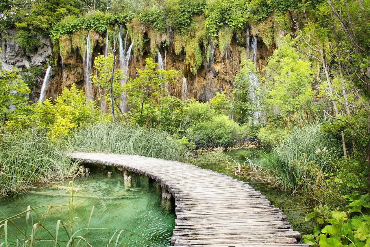 Drewniana kładka w plitwickim parku (Chorwacja) - Park Narodowy Jezior Plitwickich jest uznawany za jedno z najpiękniejszych miejsc na terenie Chorwacji. Szesnaście krasowych jezior o turkusowej wodzie leży blisko granicy z Bośnią i Hercegowiną (14×9)