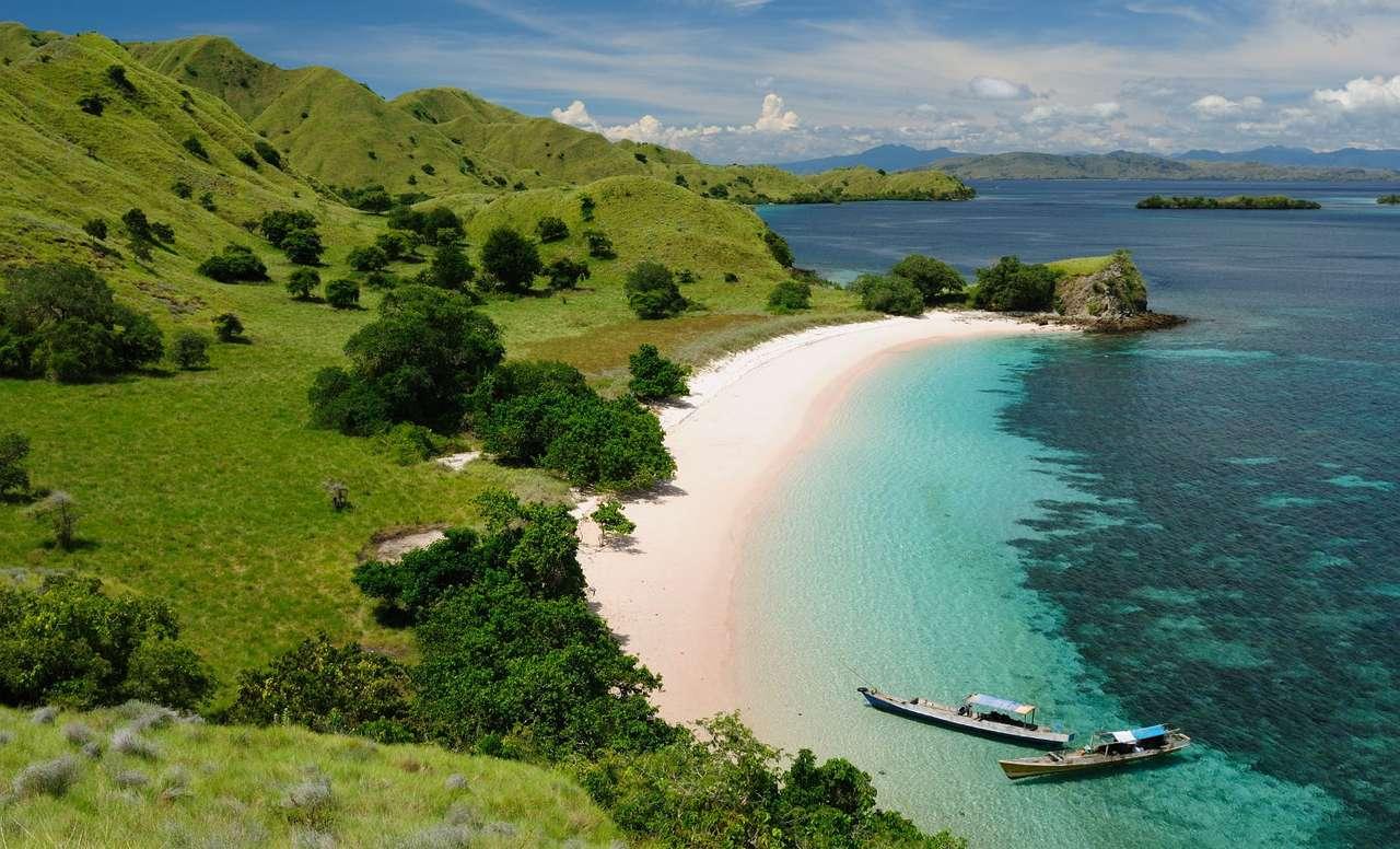 Wybrzeże Parku Narodowego Komodo (Indonezja) puzzle ze zdjęcia