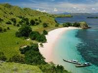 Wybrzeże Parku Narodowego Komodo (Indonezja)