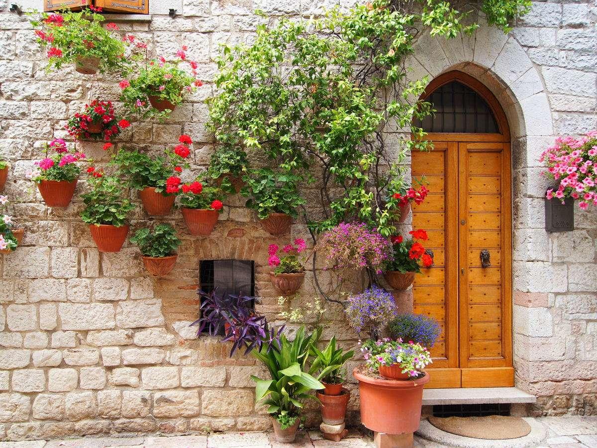 Kwiaty zdobiące wejście w Asyżu (Włochy) - Asyż leży w strefie klimatu śródziemnomorskiego – lata są tutaj gorące, a zimy łagodne, co determinuje występowanie określonych gatunków roślin. Doskonale rozwijają się tutaj wszelkie r (15×12)
