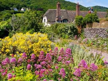 Dom pośród kwiatów w Porlock Weir (Wielka Brytania)