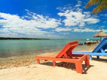 Plaża wyspy z archipelagu Florida Keys (USA)