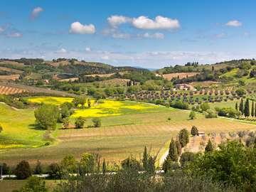 Wzgórza Toskanii (Włochy)