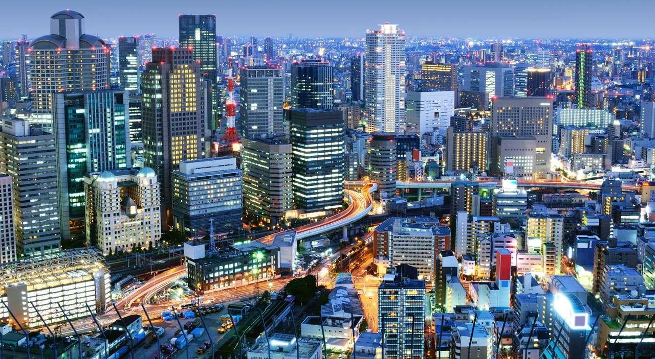 """Dzielnica Umeda w Osace (Japonia) - Umeda to centrum handlu i biznesu w Osace. Tutaj mieści się główny północny dworzec miasta - stacje Osaka i Umeda. Nazwa Umeda znaczy """"pole śliwek"""", co wiąże się z dawnym rolniczym przez (16×8)"""