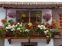 Ukwiecony balkon w Teror (Hiszpania)