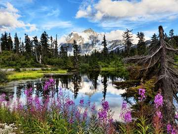 Widok na górę Shuksan i jezioro Highwood Lake (USA)