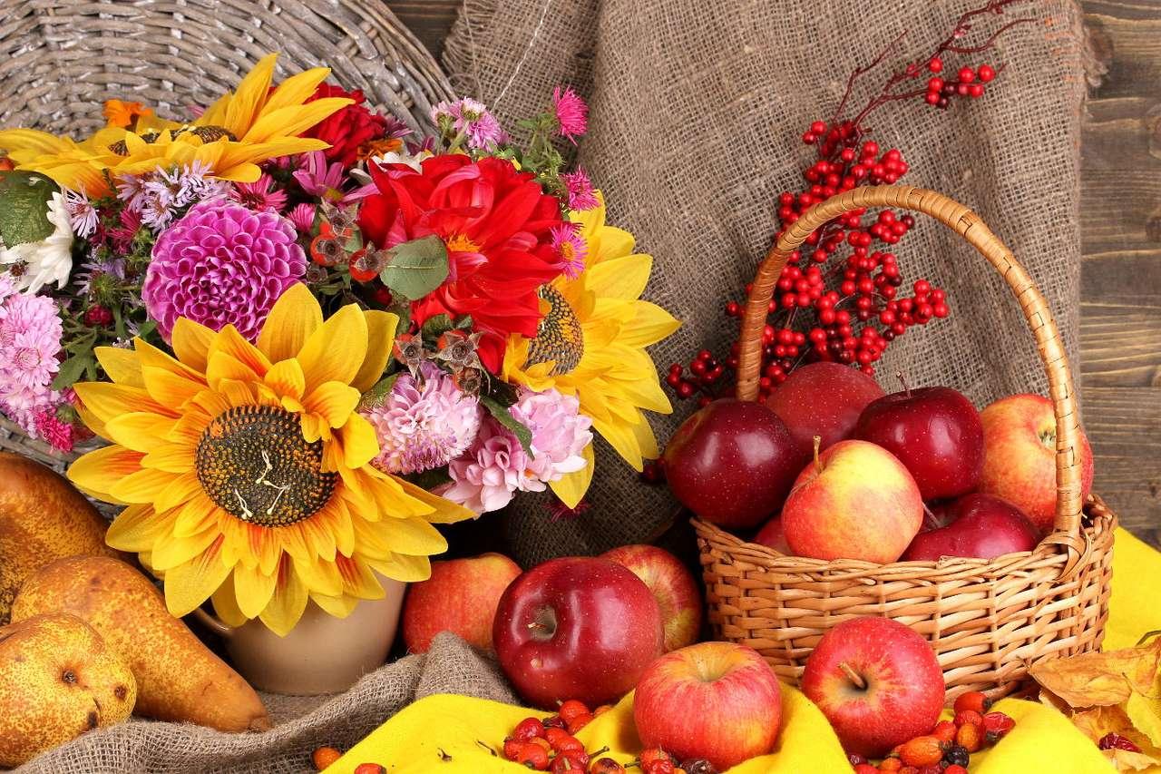Jesienna martwa natura z jabłkami - Jabłka to owoce jabłoni, występujące w różnych odmianach, kolorach i rozmiarach. Mają szerokie zastosowanie w kuchni jako dodatek do deserów, ciast, dań jarskich i mięsnych. Jednak najczęś (15×10)