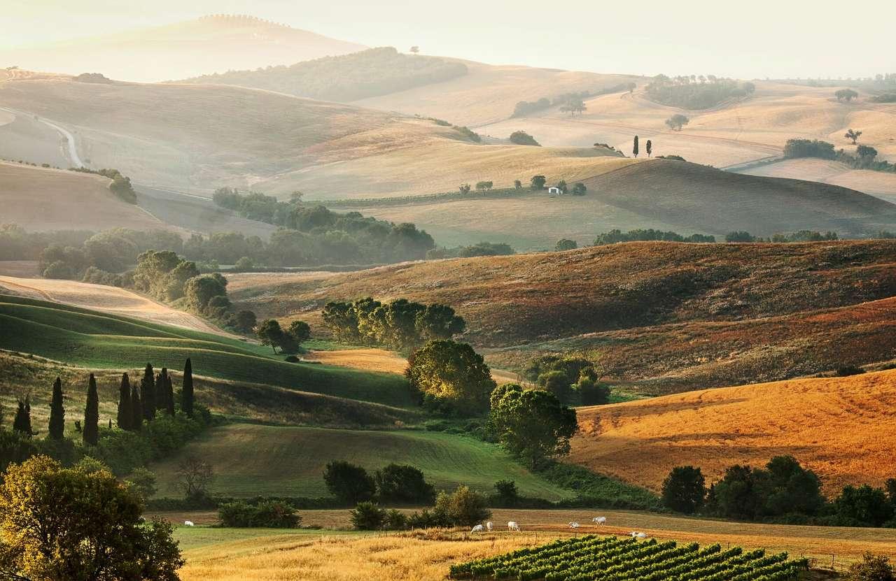 Wiejski krajobraz Toskanii (Włochy)