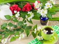 Kompozycja z zieloną herbatą i gałązkami jaśminu