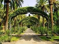Park w Santa Cruz de Tenerife (Hiszpania)