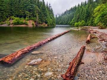 Jezioro Alouette (Kanada)