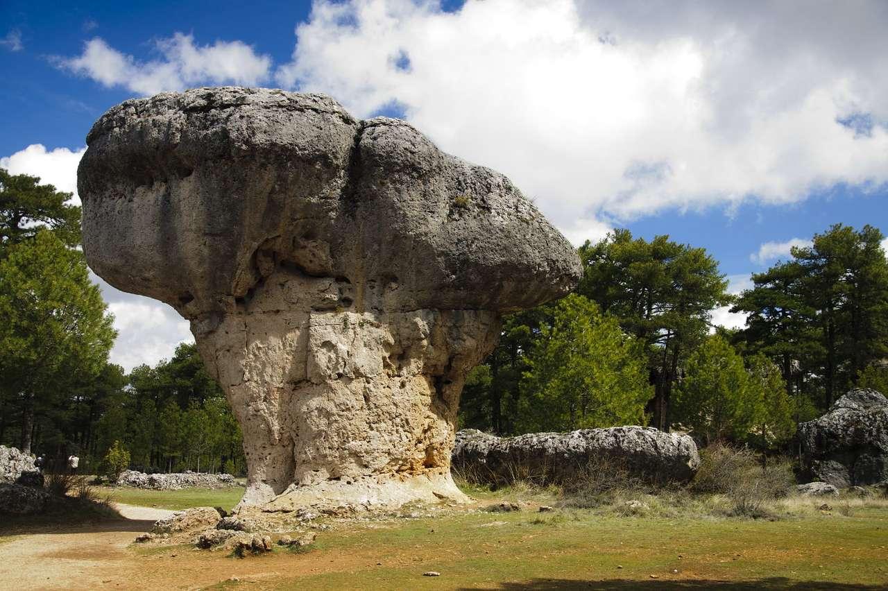 Skała w parku narodowym Ciudad Encantada (Hiszpania)