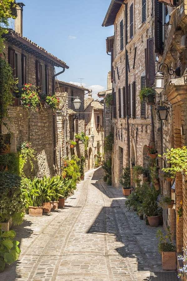Uliczka w mieście Spello (Włochy) - Spello to miejscowość usytuowana w regionie Umbria, w środkowej części Włoch. Miasto zostało założone przez starożytnych Rzymian, jednak ma zdecydowanie średniowieczny charakter. Stare mias (6×10)