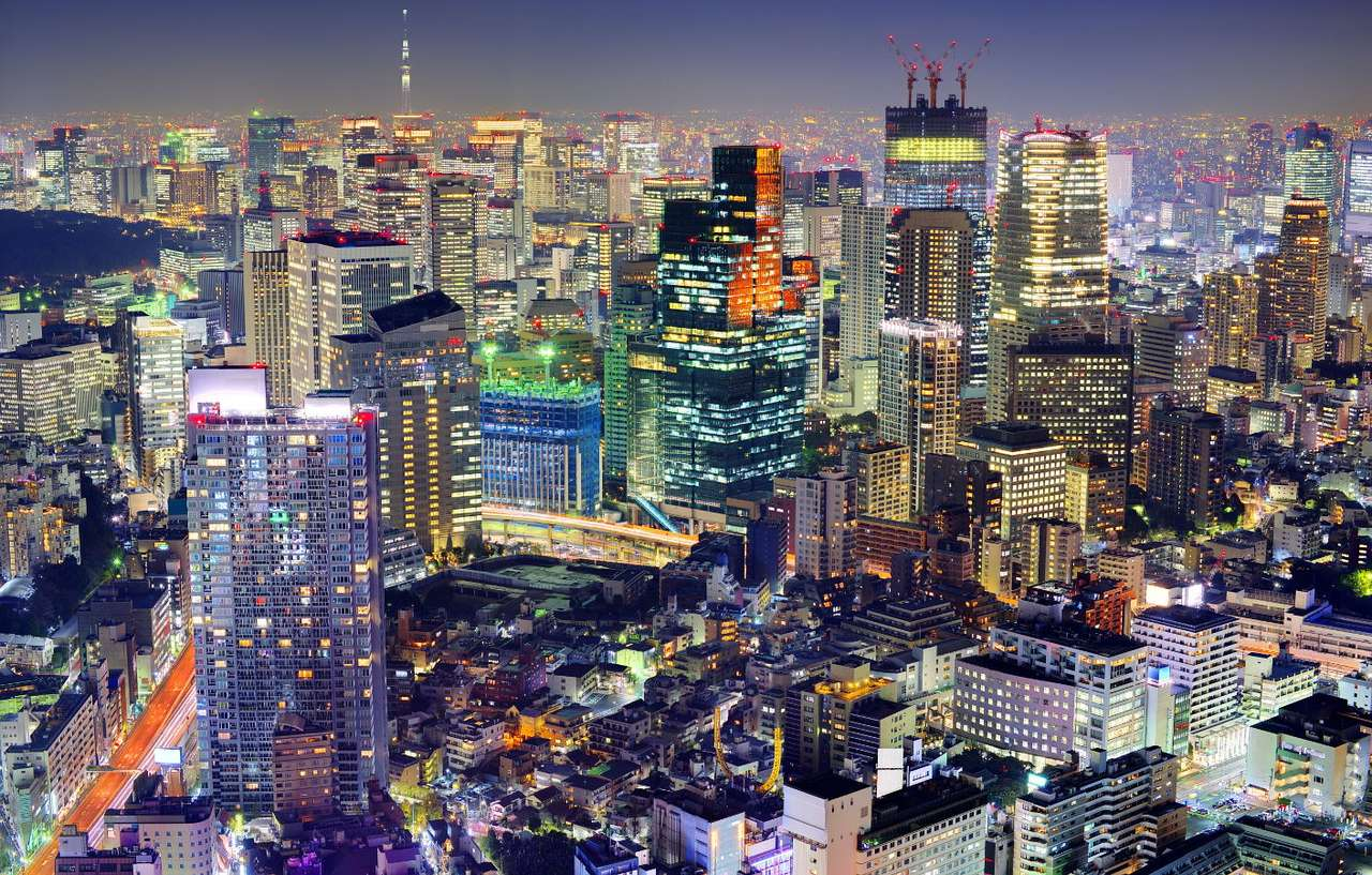 Dzielnica Minato w Tokio (Japonia) - Tokio to stolica Japonii, zlokalizowana na wyspie Honsiu. Miasto szybko się rozwija w dziedzinie przemysłu, handlu i usług, a nad jego panoramą od lat górują nowoczesne drapacze chmur. W Tokio w (10×6)