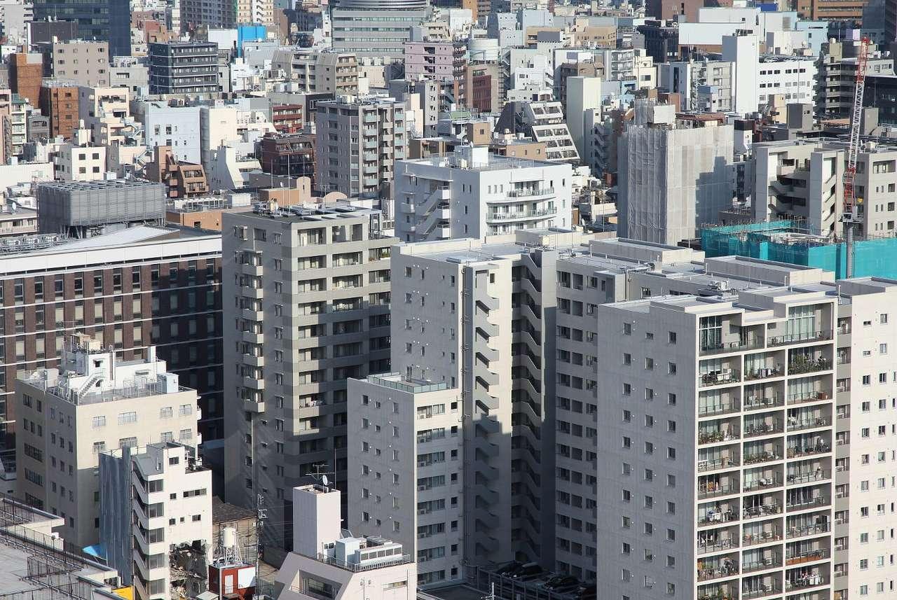 Wieżowce w dzielnicy Bunkyo w Tokio (Japonia) - Bunkyo to jedna z dzielnic stolicy Japonii, Tokio. Położona jest w centralnej części miasta i stanowi jego centrum edukacyjne oraz mieszkaniowe. Na terenie Bunkyo wybudowano wiele drapaczy chmur, (16×10)