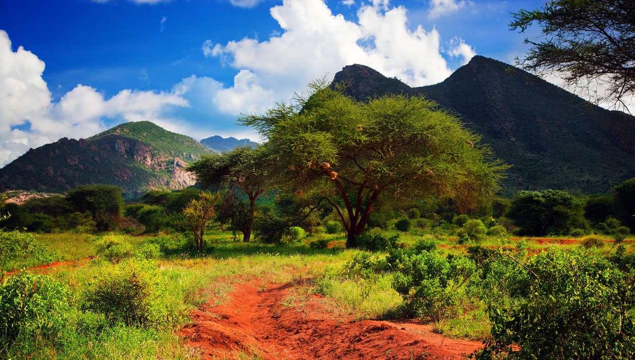 Droga w parku narodowym Tsavo West (Kenia) - Park narodowy Tsavo West położony jest w południowo-wschodniej Kenii. Jest to ogromny obszar, obejmujący ponad 9 tys. kilometrów kwadratowych objętych ścisłą ochroną. Najcenniejsze bogactwa (10×6)