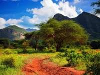 Droga w parku narodowym Tsavo West (Kenia) puzzle ze zdjęcia