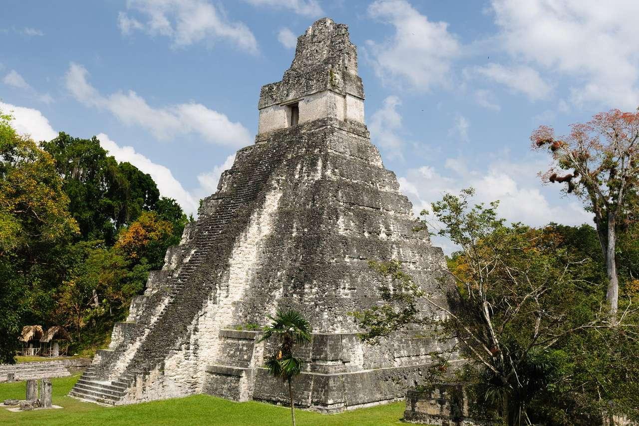 Ruiny w mieście Majów, Tikal (Gwatemala) - Tikal to starożytne miasto Majów położone na północy Gwatemali. Zostało założone w III w. n.e. i najprawdopodobniej było stolicą państwa Majów. Jego ruiny zostały odkryte przez hiszpańs (9×6)