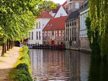 Kanał w Brugii (Belgia)