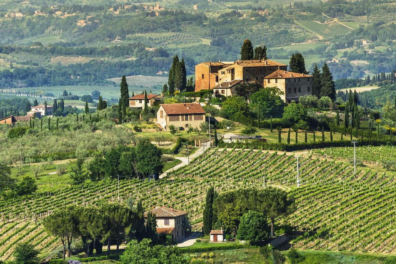 Wiejski krajobraz Toskanii, nieopodal San Gimignano (Włochy) - Toskania to bardzo znana kraina geograficzna położona w środkowo-zachodniej części Włoch. Swoją popularność zawdzięcza łagodnemu klimatowi, pięknie ukształtowanemu, pagórkowatemu krajobr (11×8)