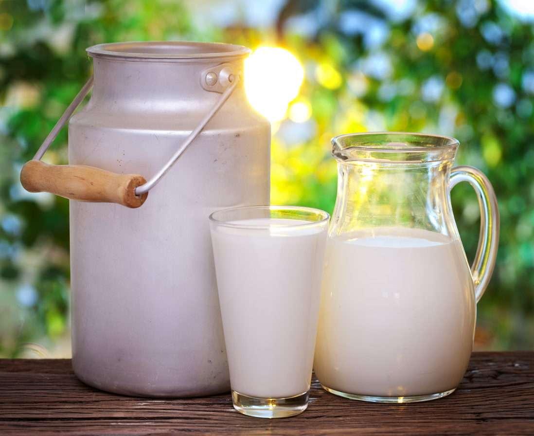 Mleko - Mleko to jeden z produktów żywnościowych, stosowanych w wielu kuchniach świata. W największych ilościach spożywa się na świecie mleko krowie, ale w niektórych regionach popularne jest także (9×7)