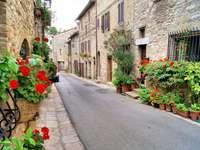 Uliczka w Asyżu (Włochy)