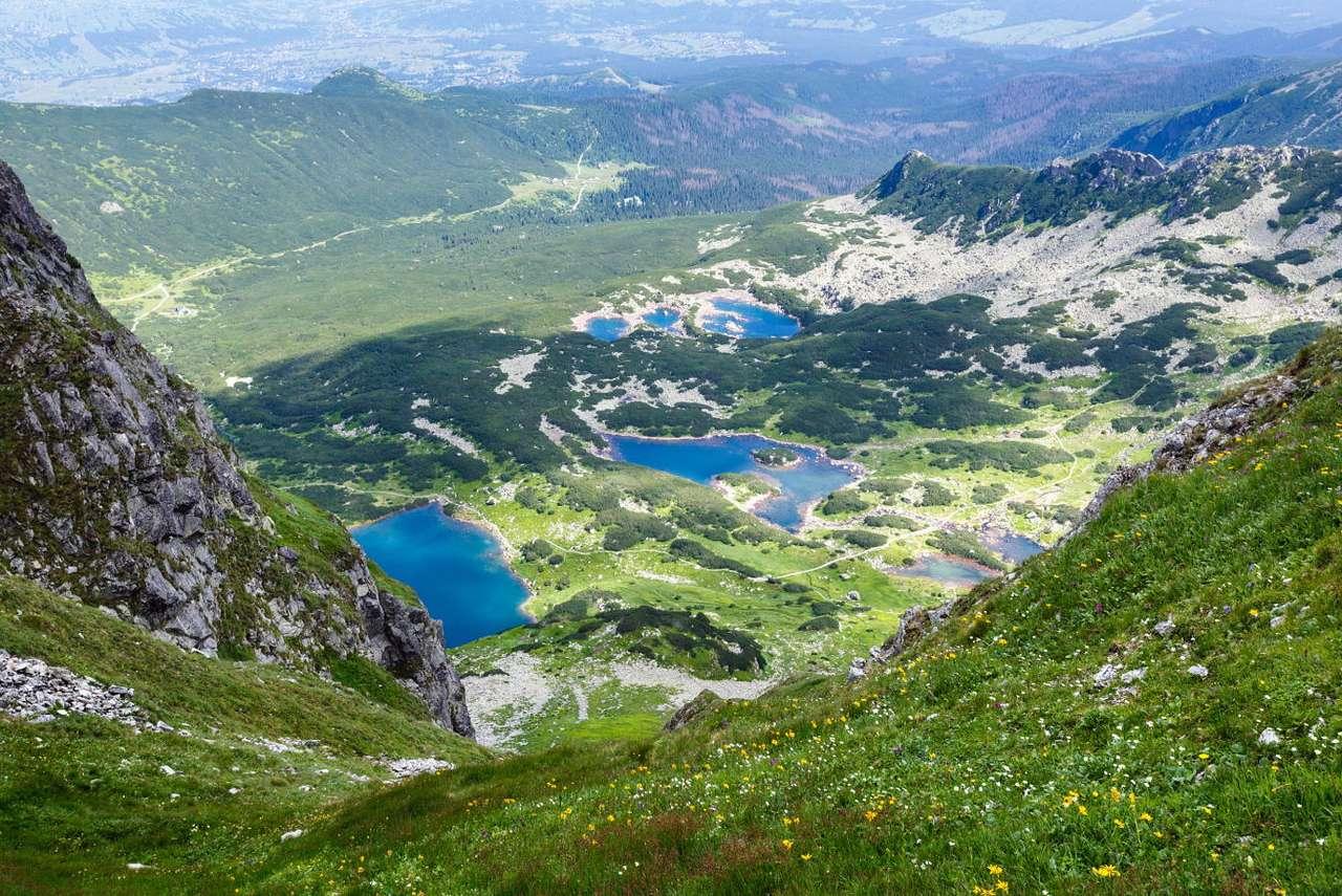 Widok na Halę Gąsienicową w Tatrach - Hala Gąsienicowa zawdzięcza swoją nazwę nazwisku jej właścicieli, zakopiańskiej rodziny Gąsieniców. Posiadana przez nich hala należała do największych ośrodków pasterskich w całych Tatr (11×8)