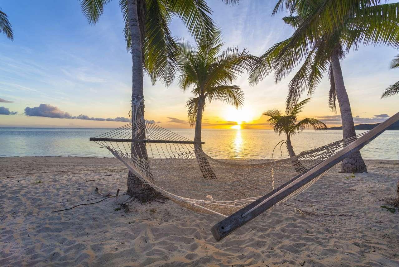 Hamak rozpięty między palmami na tropikalnej plaży