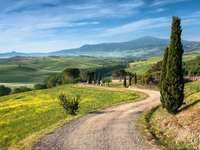 Zielona Toskania (Włochy) puzzle