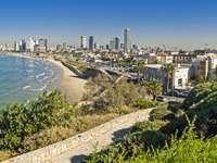 Widok na linię brzegową miasta Tel Awiw (Izrael)