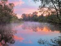 Wschód słońca nad rzeką Narwią (Polska)