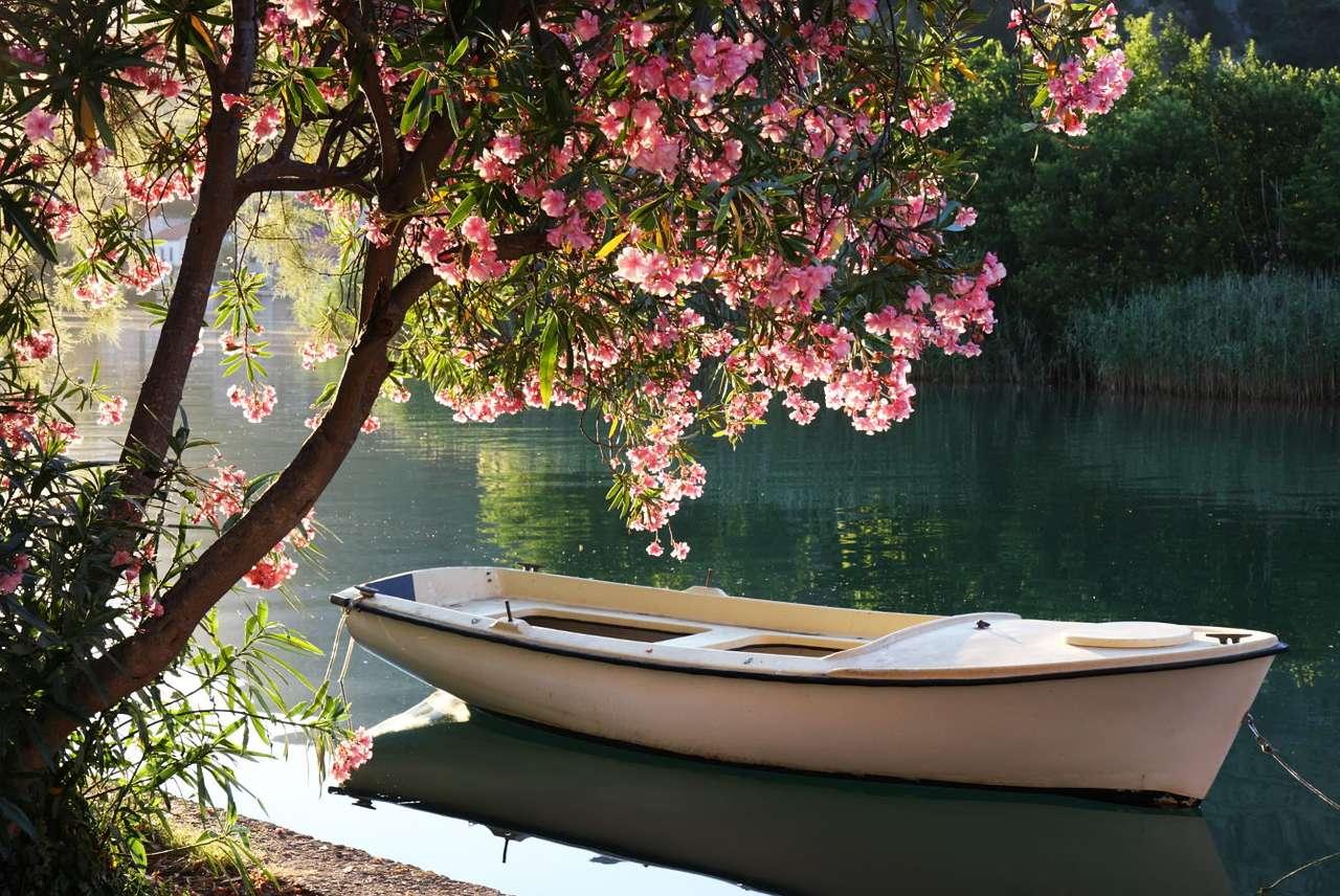 Łódź na rzece Ombla (Chorwacja) - W pobliżu Dubrownika leży wieś Rozat, dawna letnia siedziba szlachty. Rozat znajduje się nad częściowo zatopionym zalewem, na północnym brzegu zatoki Rijeka Dubrovačka. Nieopodal przepływa r (10×7)