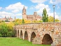 Nowa Katedra w Salamance (Hiszpania)